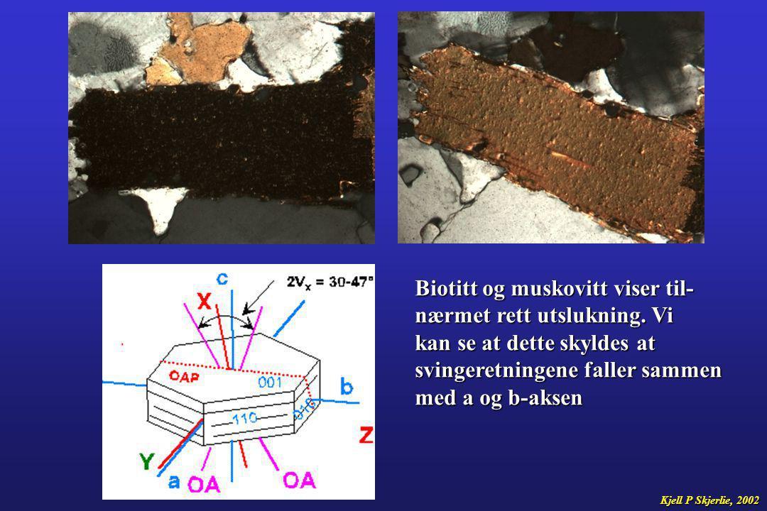 Biotitt og muskovitt viser til- nærmet rett utslukning. Vi