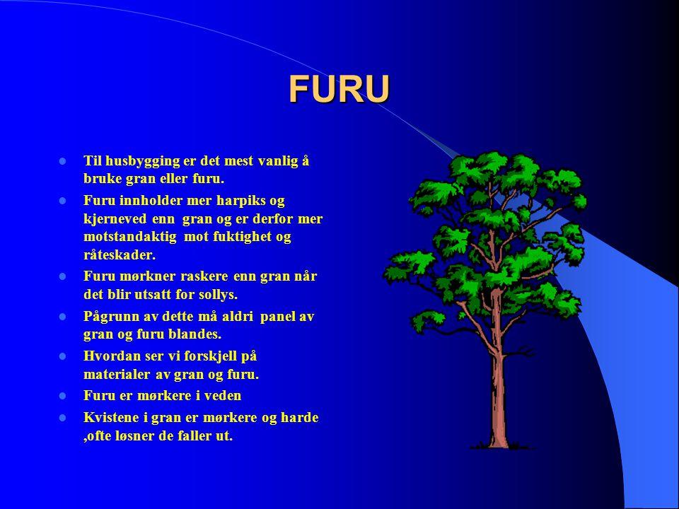 FURU Til husbygging er det mest vanlig å bruke gran eller furu.