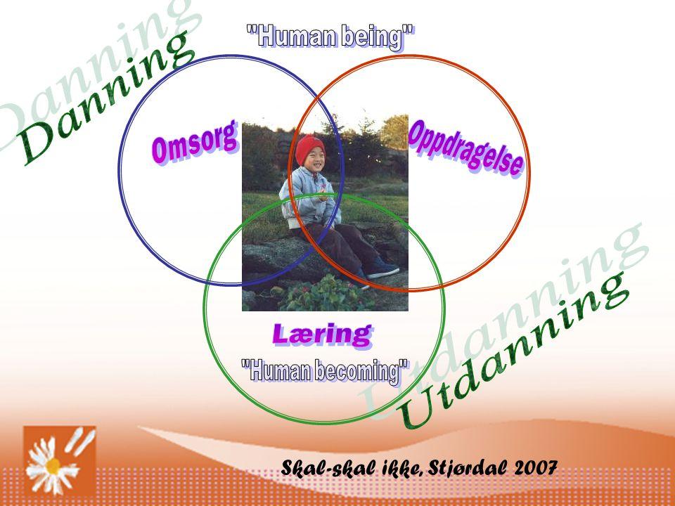 Danning Utdanning Skal-skal ikke, Stjørdal 2007 Human being