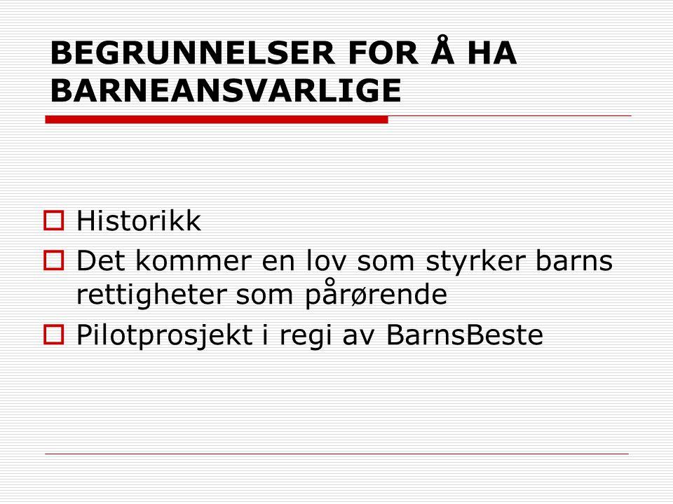 BEGRUNNELSER FOR Å HA BARNEANSVARLIGE