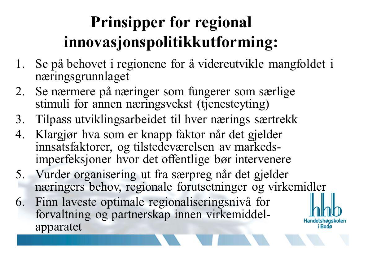 Prinsipper for regional innovasjonspolitikkutforming: