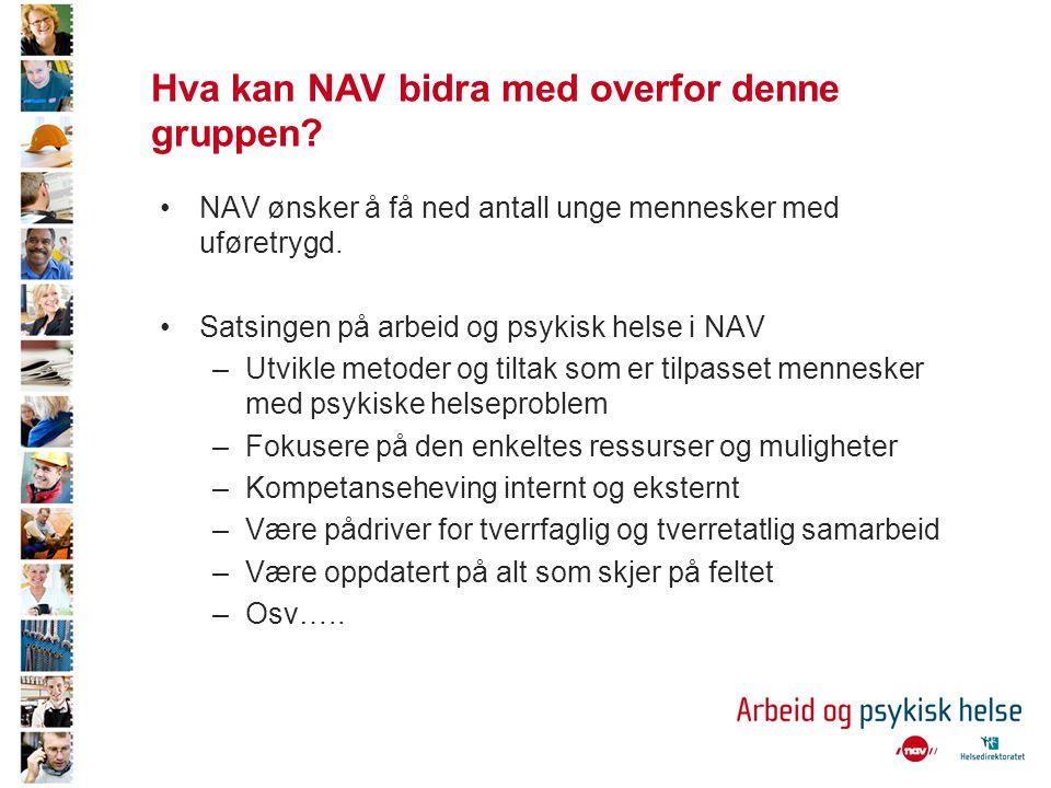 Hva kan NAV bidra med overfor denne gruppen
