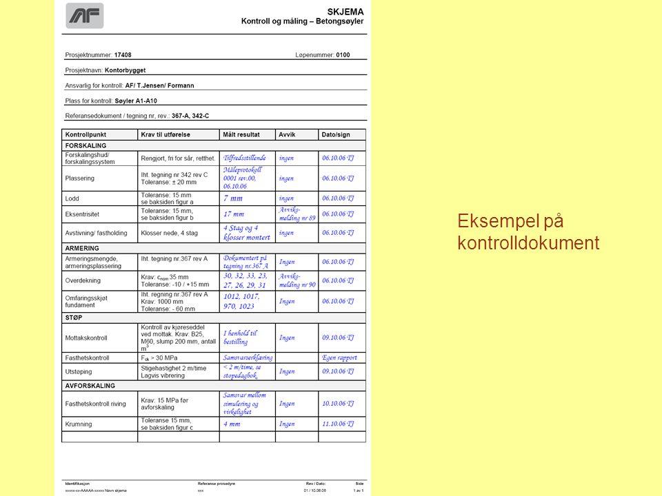 Eksempel på kontrolldokument