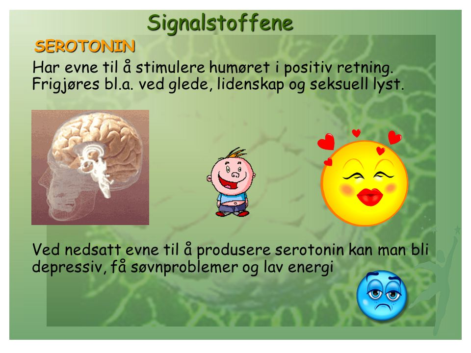Signalstoffene SEROTONIN