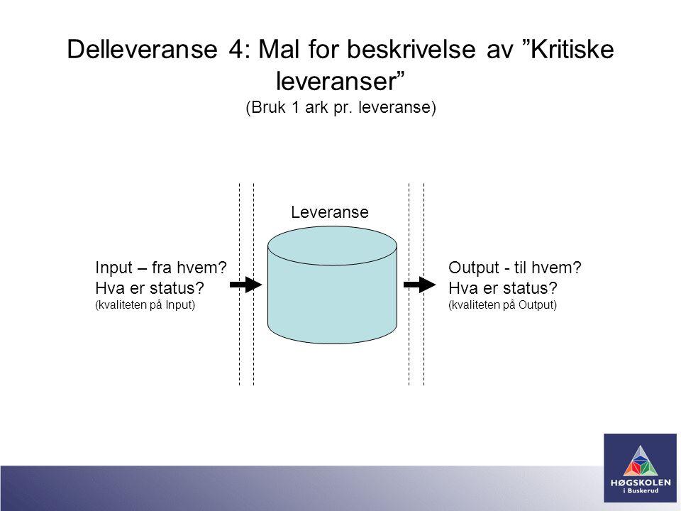 Delleveranse 4: Mal for beskrivelse av Kritiske leveranser (Bruk 1 ark pr. leveranse)