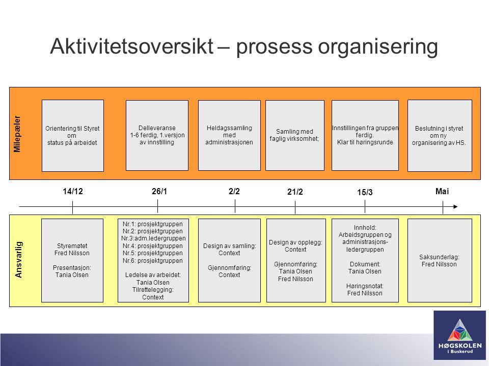 Aktivitetsoversikt – prosess organisering