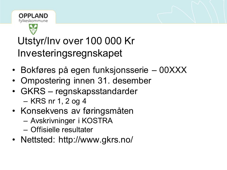Utstyr/Inv over 100 000 Kr Investeringsregnskapet