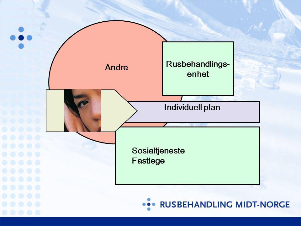 Andre Rusbehandlings- enhet Individuell plan Sosialtjeneste Fastlege