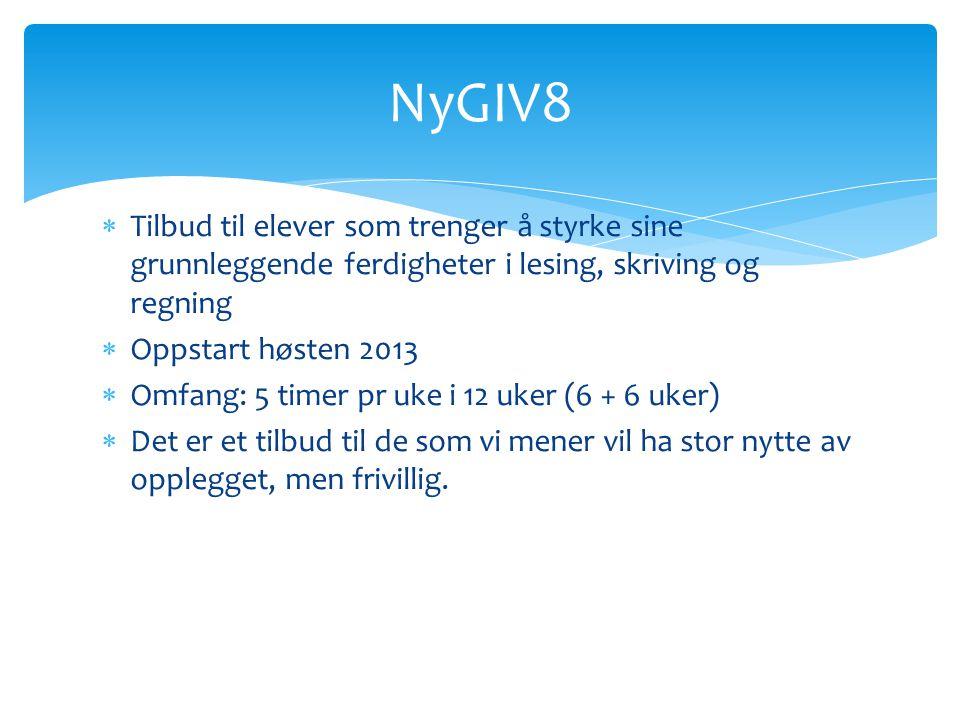 NyGIV8 Tilbud til elever som trenger å styrke sine grunnleggende ferdigheter i lesing, skriving og regning.