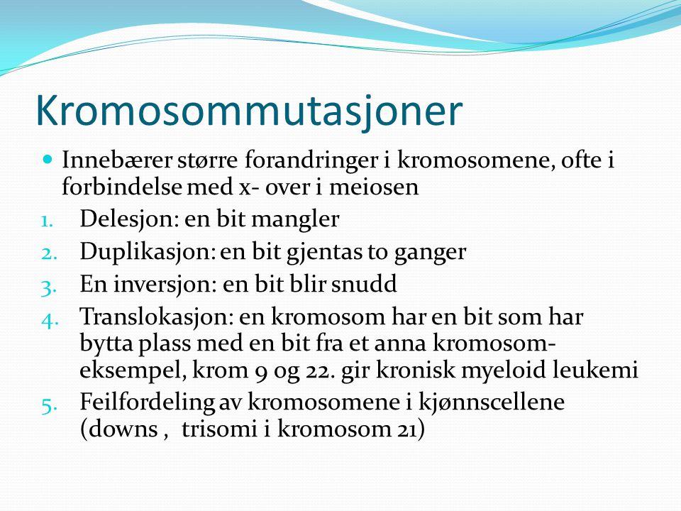 Kromosommutasjoner Innebærer større forandringer i kromosomene, ofte i forbindelse med x- over i meiosen.