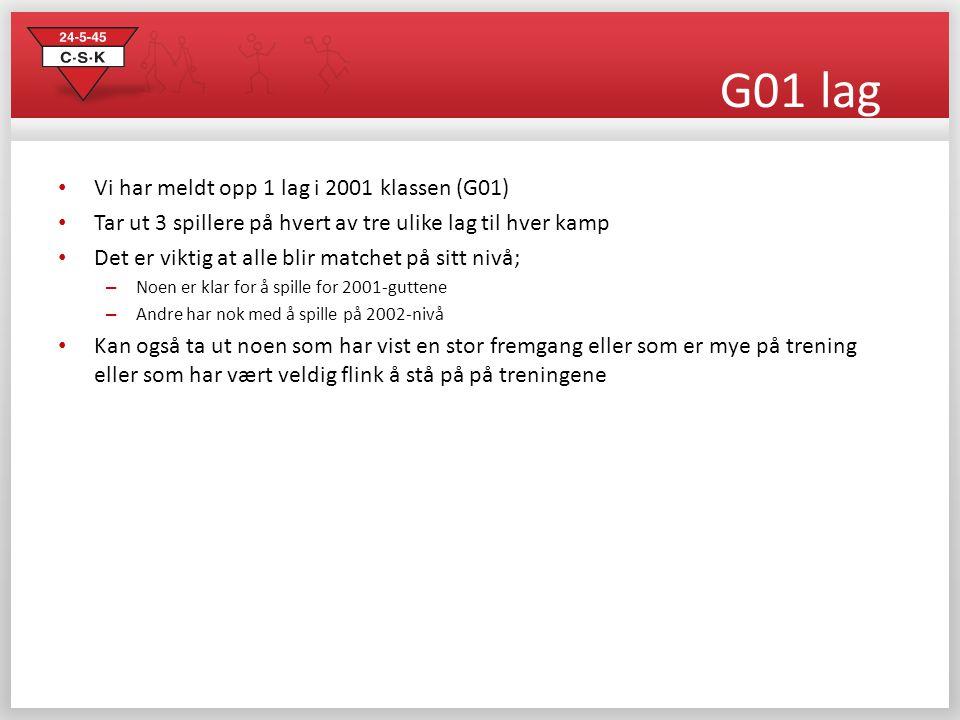 G01 lag Vi har meldt opp 1 lag i 2001 klassen (G01)