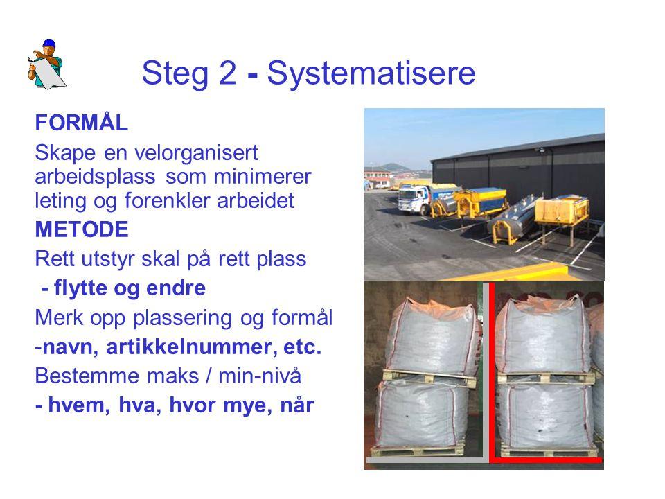 Steg 2 - Systematisere FORMÅL