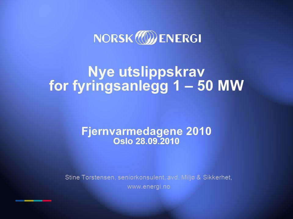 Stine Torstensen, seniorkonsulent, avd. Miljø & Sikkerhet,