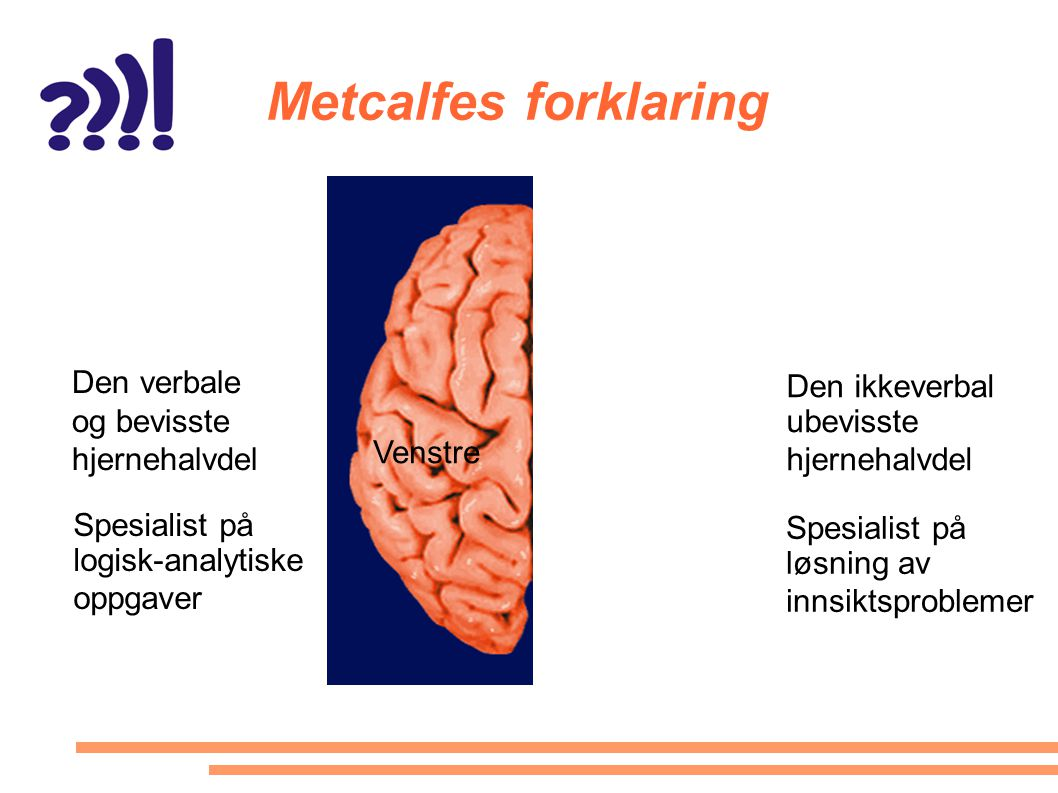 Metcalfes forklaring Den verbale og bevisste hjernehalvdel