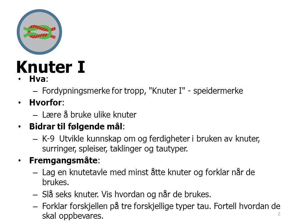 Knuter I Hva: Fordypningsmerke for tropp, Knuter I - speidermerke