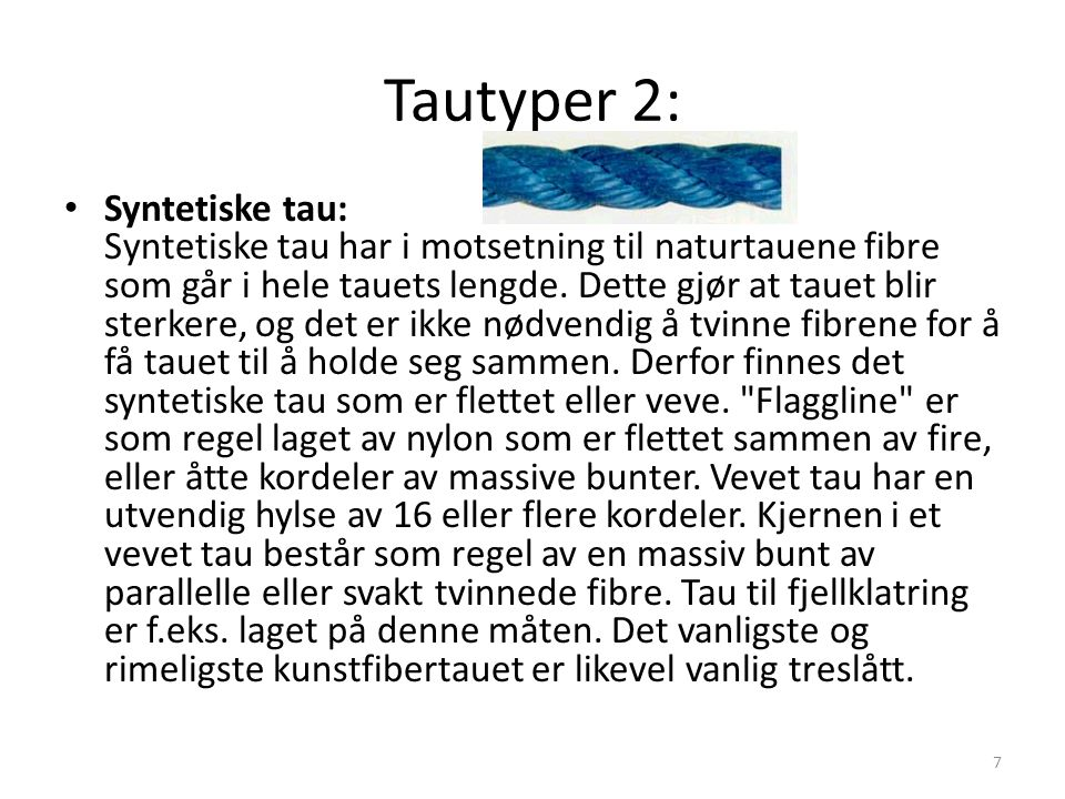 Tautyper 2: