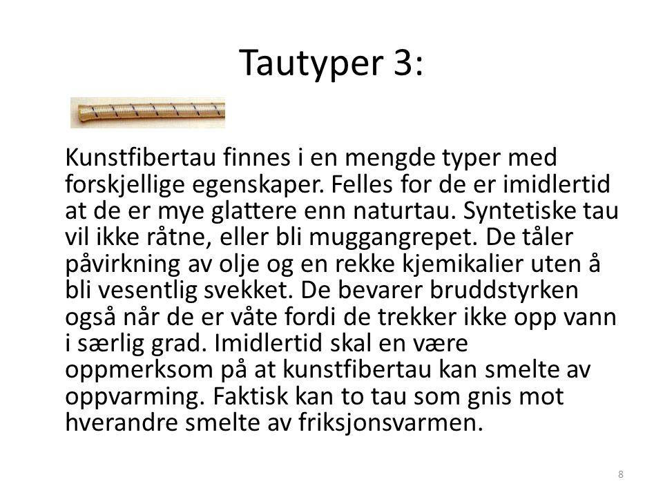 Tautyper 3: