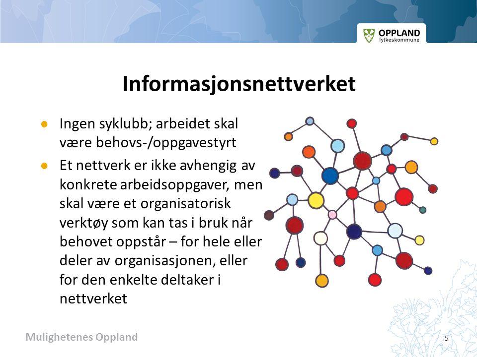 Informasjonsnettverket