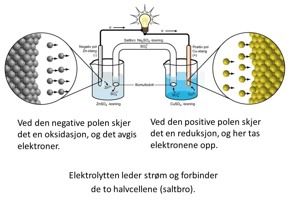 Elektrolytten leder strøm og forbinder de to halvcellene (saltbro).