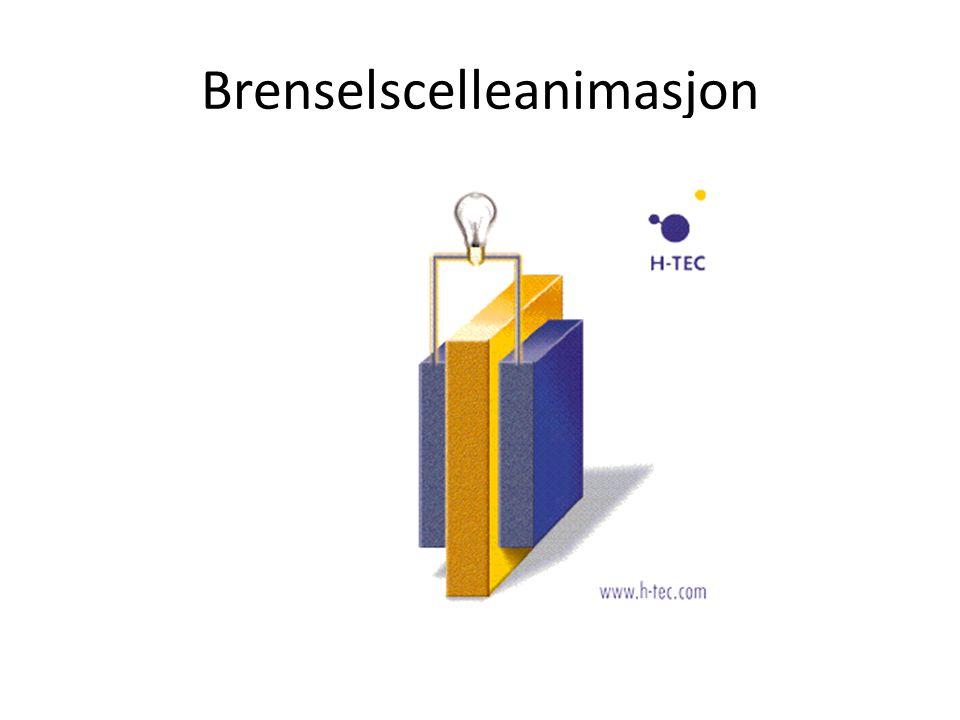 Brenselscelleanimasjon
