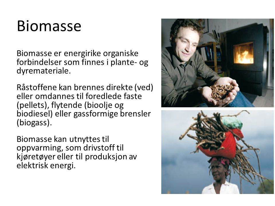 Biomasse Biomasse er energirike organiske forbindelser som finnes i plante- og dyremateriale.