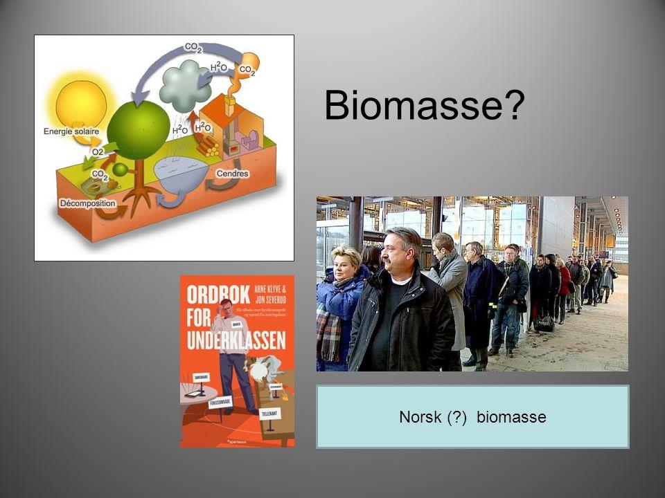 Biomasse Norsk ( ) biomasse