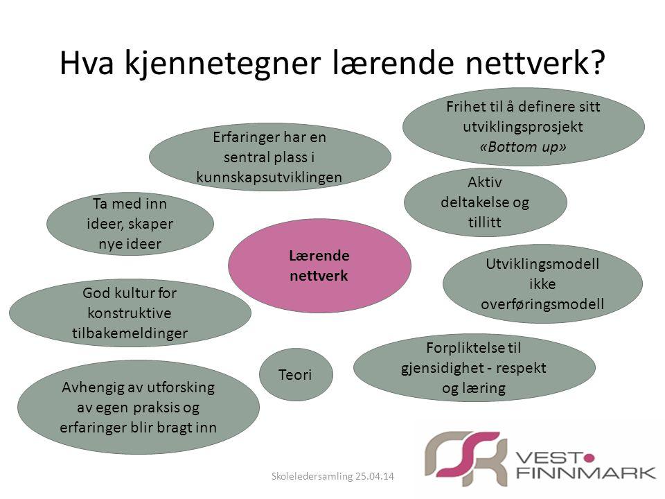 Hva kjennetegner lærende nettverk