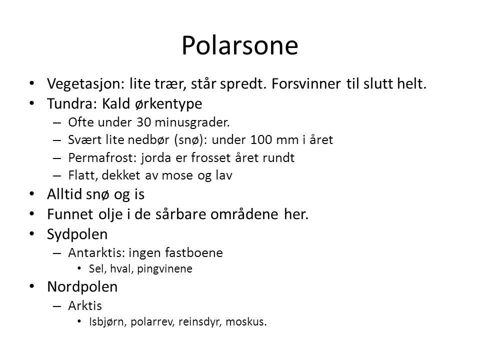 Polarsone Vegetasjon: lite trær, står spredt. Forsvinner til slutt helt. Tundra: Kald ørkentype. Ofte under 30 minusgrader.