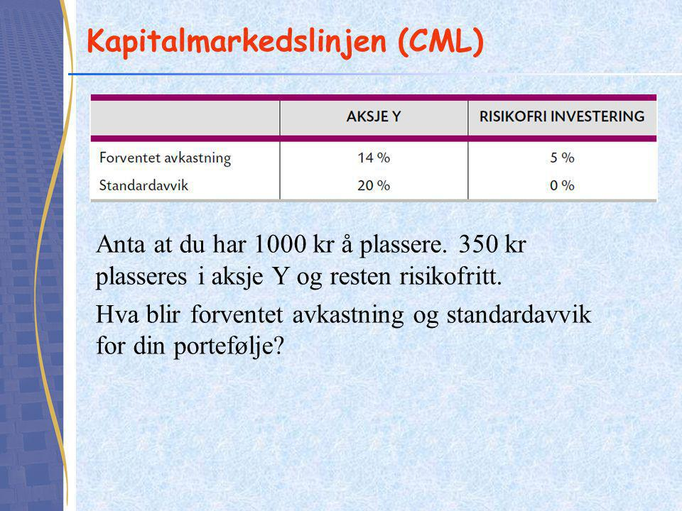 Kapitalmarkedslinjen (CML)