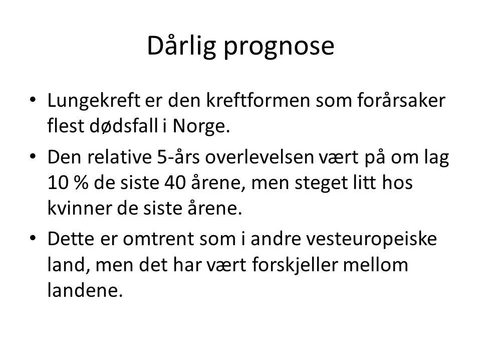 Dårlig prognose Lungekreft er den kreftformen som forårsaker flest dødsfall i Norge.