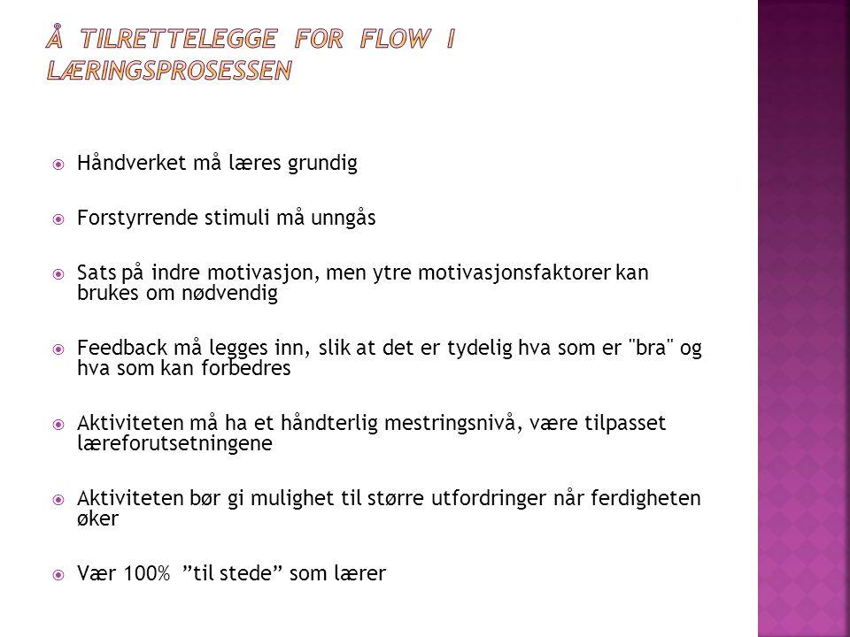 Å TILRETTELEGGE FOR FLOW I LÆRINGSPROSESSEN