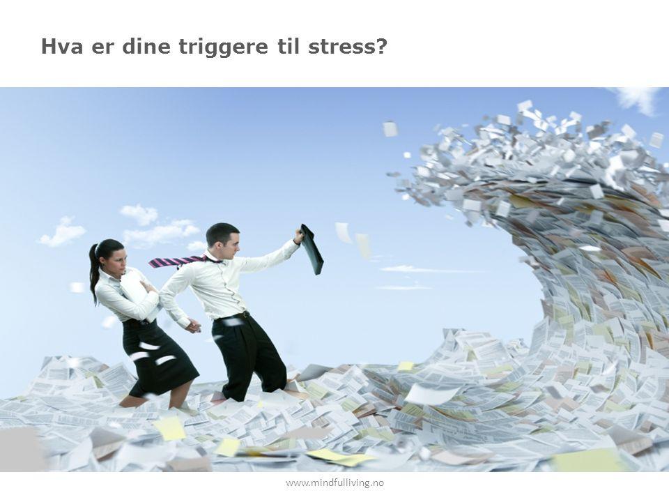 Hva er dine triggere til stress