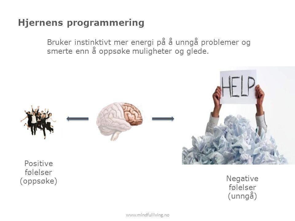 Hjernens programmering