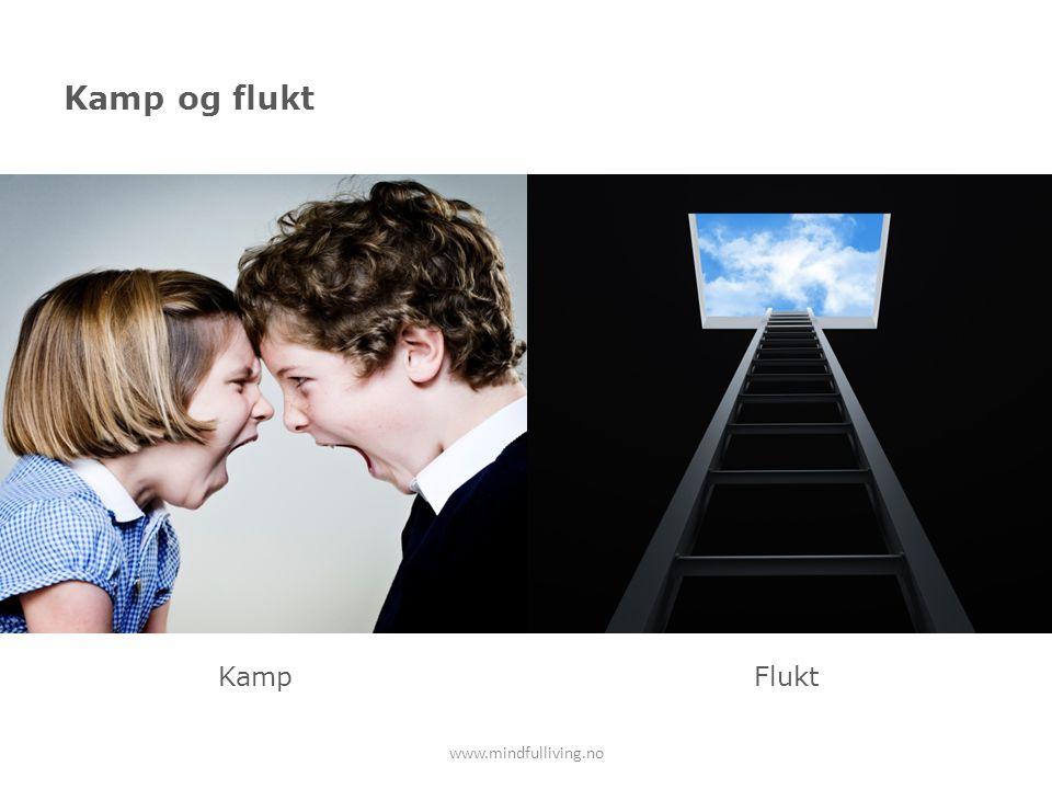 Kamp og flukt Kamp Flukt www.mindfulliving.no