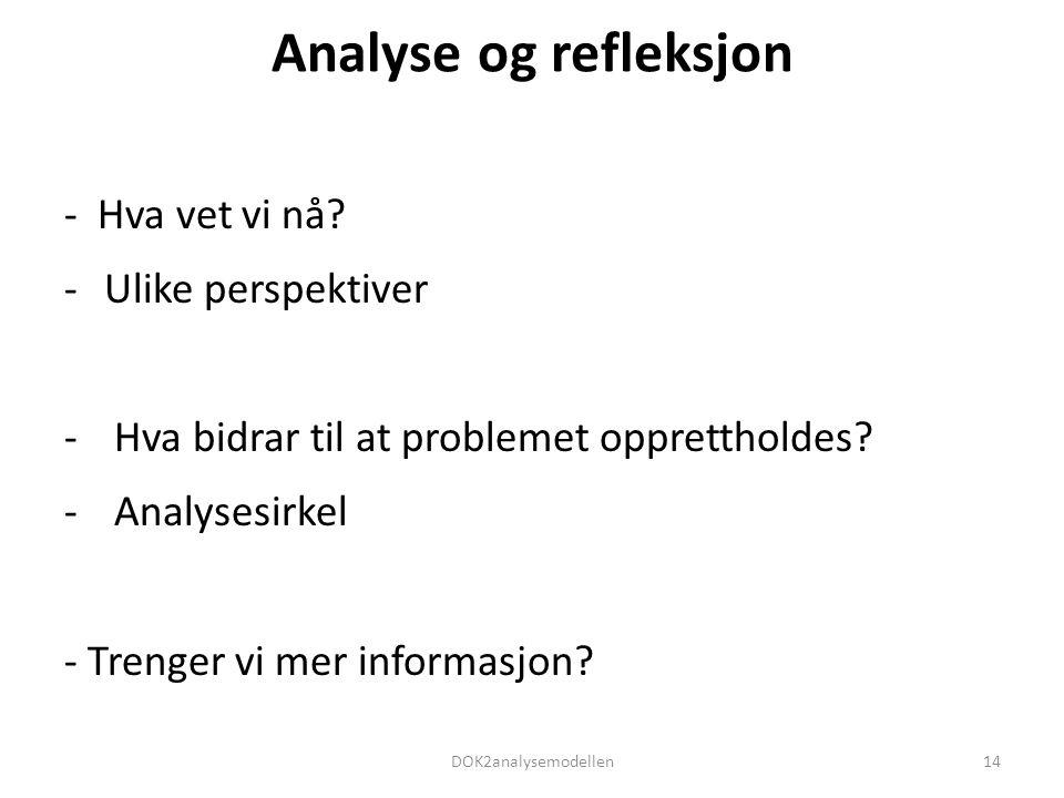 Analyse og refleksjon - Hva vet vi nå Ulike perspektiver