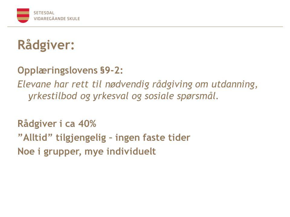 Rådgiver: