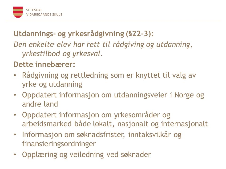 Utdannings- og yrkesrådgivning (§22-3):