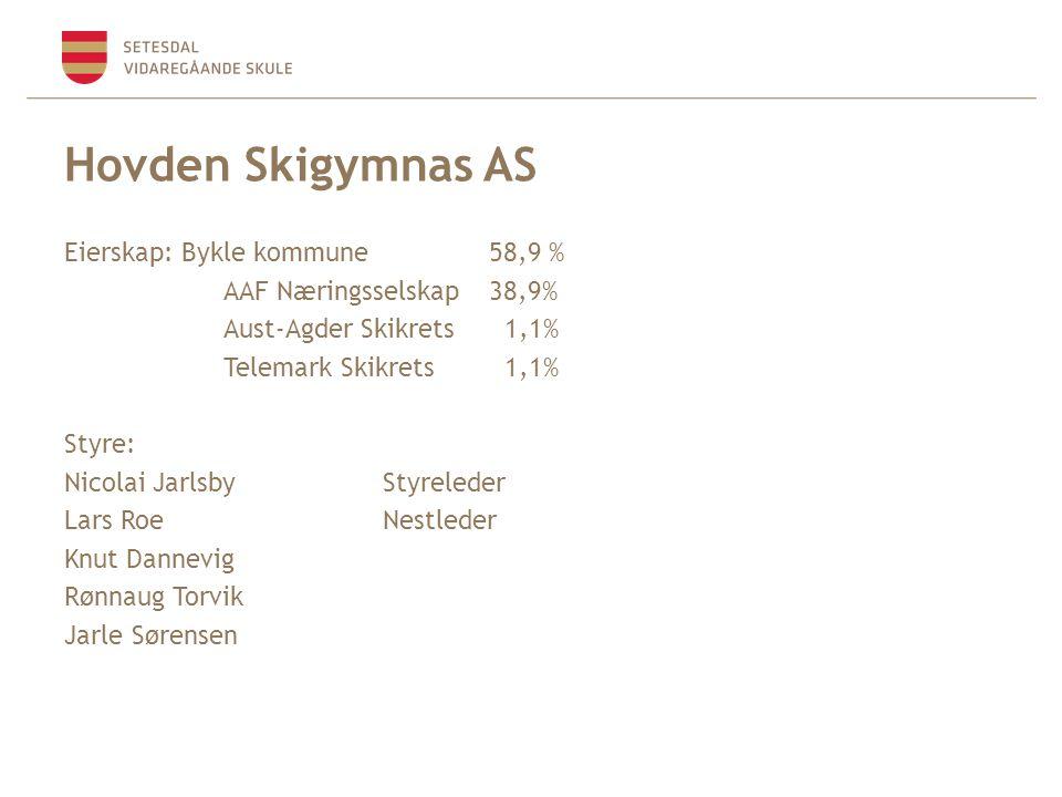 Hovden Skigymnas AS