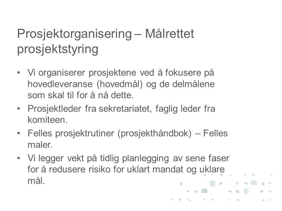 Prosjektorganisering – Målrettet prosjektstyring