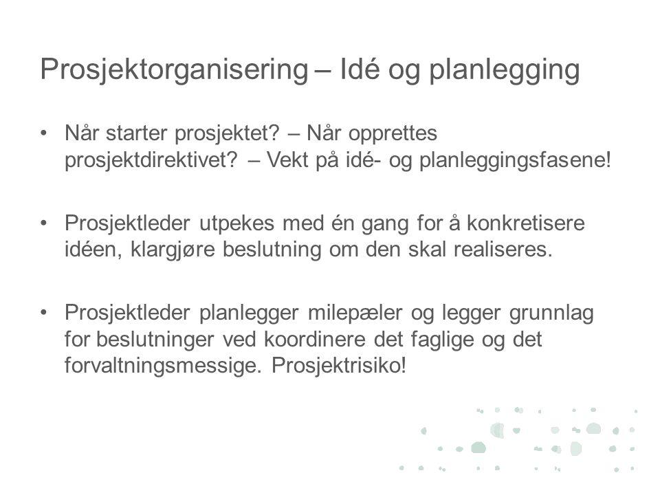 Prosjektorganisering – Idé og planlegging