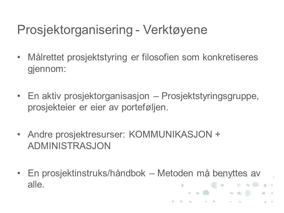 Prosjektorganisering - Verktøyene