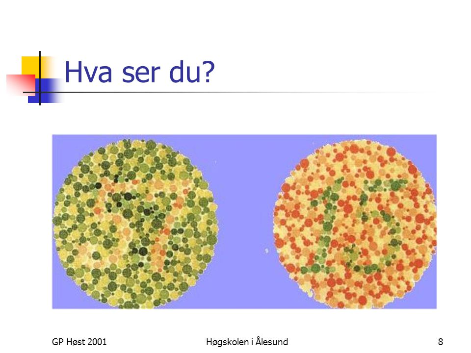 Hva ser du GP Høst 2001 Høgskolen i Ålesund