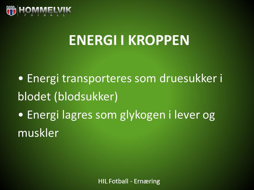 ENERGI I KROPPEN • Energi transporteres som druesukker i