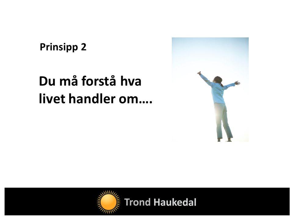 Prinsipp 2 Du må forstå hva livet handler om….