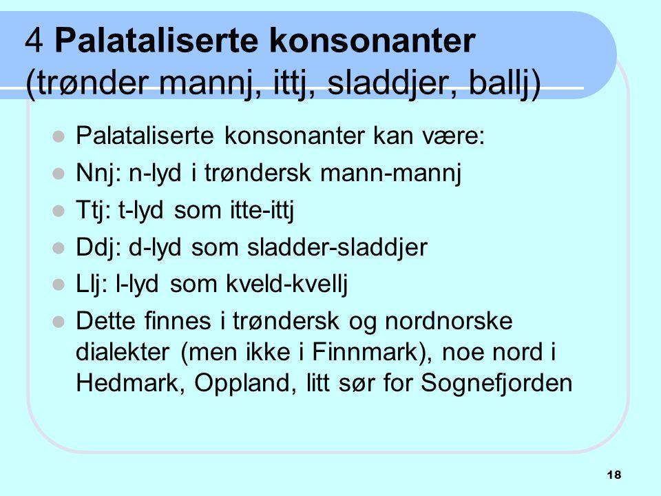 4 Palataliserte konsonanter (trønder mannj, ittj, sladdjer, ballj)