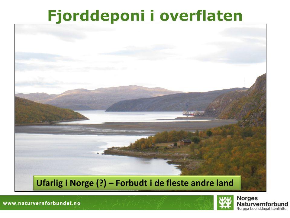 Fjorddeponi i overflaten