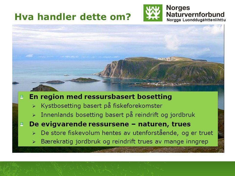Hva handler dette om En region med ressursbasert bosetting
