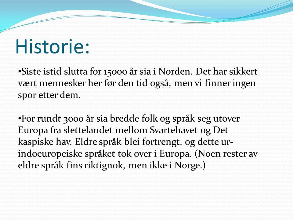 Historie: Siste istid slutta for 15000 år sia i Norden. Det har sikkert vært mennesker her før den tid også, men vi finner ingen spor etter dem.