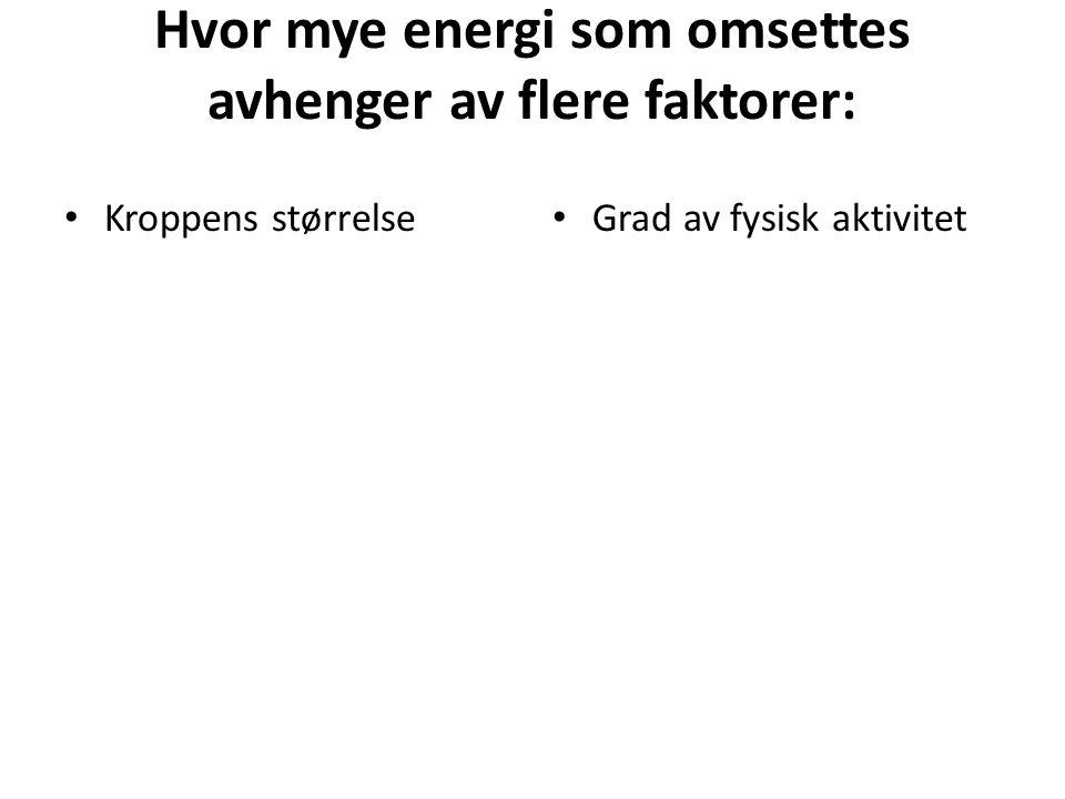 Hvor mye energi som omsettes avhenger av flere faktorer:
