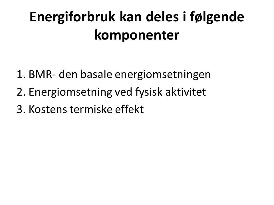 Energiforbruk kan deles i følgende komponenter